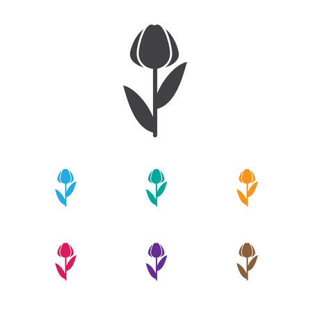 dafne: Vector Illustration Of Gardening Symbol On Daphne Icon Vettoriali