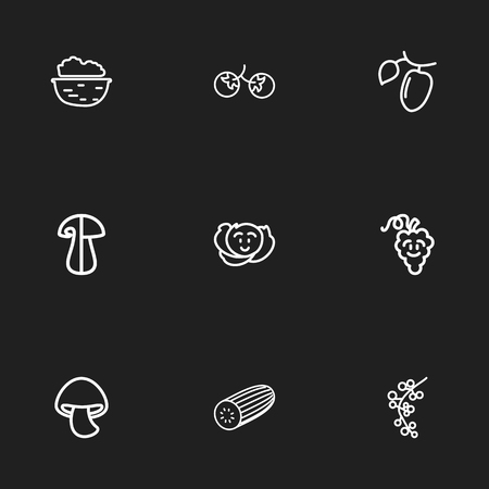 Set Of 9 Editable Cookware Outline Icons. Includes Symbols Such As Currant, Zucchini, Walnut And More. Can Be Used For Web, Mobile, UI And Infographic Design.