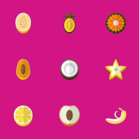 Set Of 9 Editable Berry Flat Icons. Includes Symbols Such As Jungle Fruit, Cocos, Starfruit And More. Can Be Used For Web, Mobile, UI And Infographic Design.