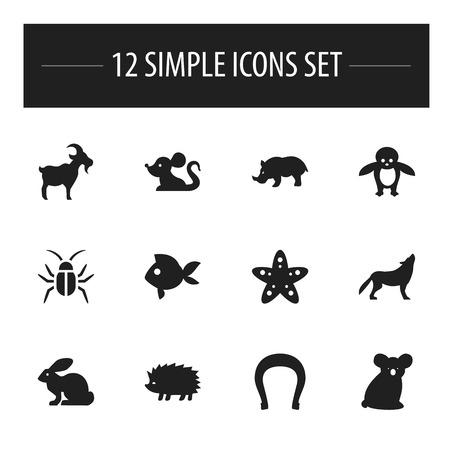 antarctic: Set Of 12 Editable Zoology Icons. Includes Symbols Such As Wolf, Turbot, Rhino And More. Can Be Used For Web, Mobile, UI And Infographic Design. Illustration