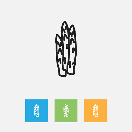 Vector Illustration Of Kitchenware Symbol On Sparrowgrass Outline. Premium Quality Isolated Asparagus Element In Trendy Flat Style. Illustration