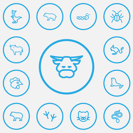 Set Of 13 Editable Zoo Outline Icons. Includes Symbols Such As Beetle, Predator, Buffalo And More. Can Be Used For Web, Mobile, UI And Infographic Design. Illustration