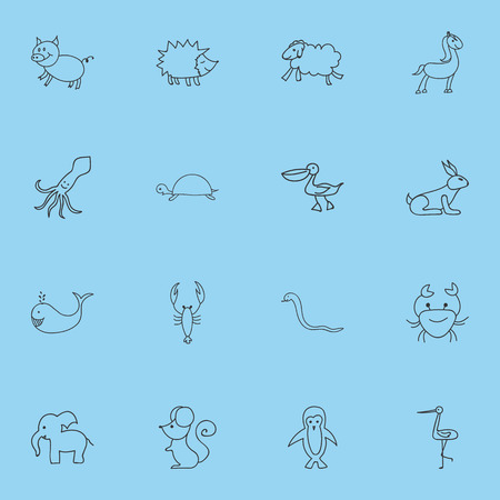 Set Of 16 Editable Animal Doodles. Includes Symbols Such As Ewe, Lobster, Cachalot And More Illustration