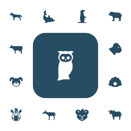 Set Of 13 Editable Animal Icons. Includes Symbols Such As Horse, Gazelle, Tiger And More.