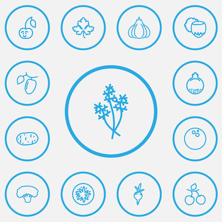 Set Of 13 Editable Vegetable Outline Icons.
