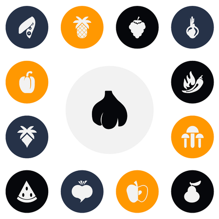 Set Of 13 Editable Berry Icons