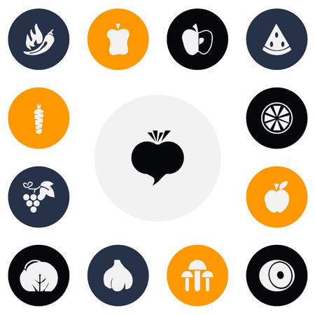 Set Of 13 Editable food Icons Illustration