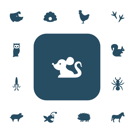 Set of 13 editable animal icons. Includes symbols such as footprint, fish, hen and more. Illustration