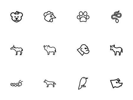 Set Of 12 Editable Zoology Outline Icons. Includes Symbols Such As Philomel, Canine, Cougar And More. Can Be Used For Web, Mobile, UI And Infographic Design. 일러스트