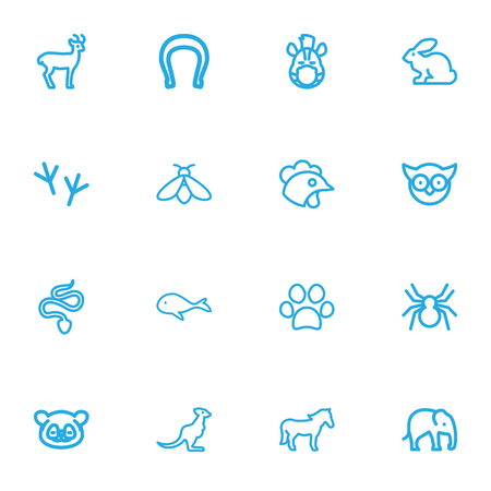 Set Of 16 Editable Zoo Outline Icons. Includes Symbols Such As Bird Trace, Spinner, Snake And More. Can Be Used For Web, Mobile, UI And Infographic Design.