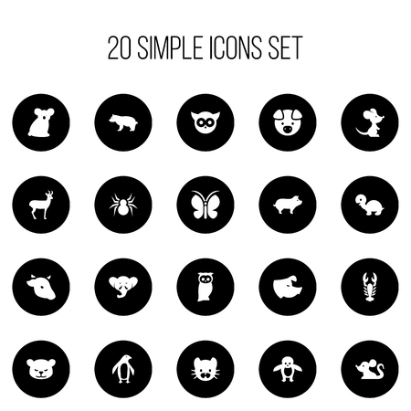 Set Of 20 Editable Animal Icons. Includes Symbols Such As Penguin, Moth, Night Fowl And More. Can Be Used For Web, Mobile, UI And Infographic Design.