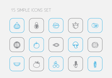 Set of 15 editable food icons line style. Includes symbols such as raspberry, almond, fig and more. Can be used for web, mobile, UI and infographic design. Illustration