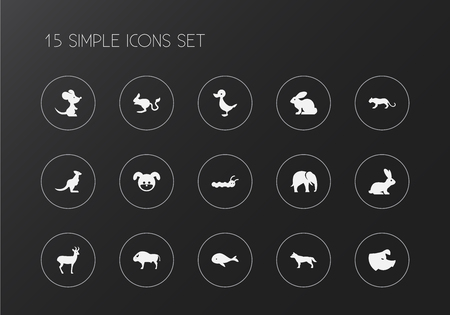Set of 15 editable zoo icons. Includes symbols such as rabbit, rat, whale and more. Can be used for web, mobile, UI and infographic design.