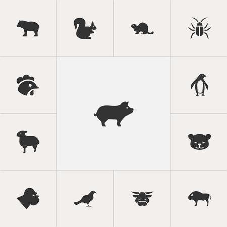 Set of 13 editable animal icons Illustration
