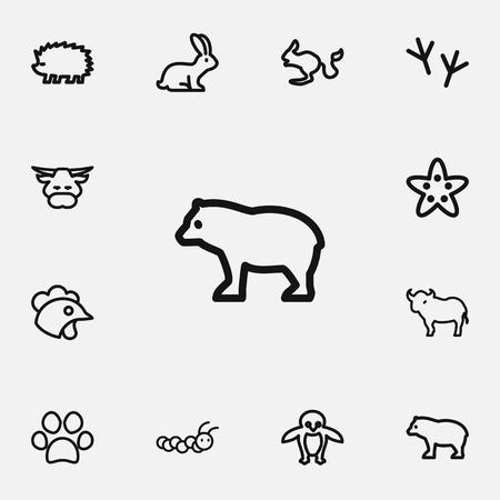 Set bewerkbare dieren pictogrammen lijnstijl. Bevat symbolen zoals stier, poot, zeester en meer.