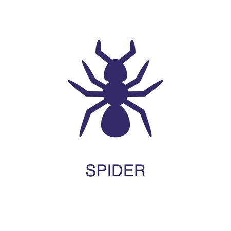 Spider element in flat simple style on white background. Spider icon, with text name concept template