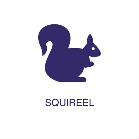 Squireel element in flat simple style on white background. Pearl icon, with text name concept template Foto de archivo - 133700587