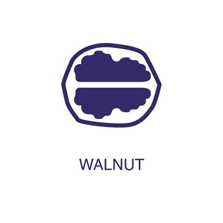 Walnut element in flat simple style on white background. Walnut icon, with text name concept template Illustration