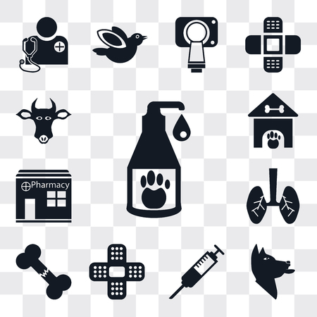 Set Of 13 simple editable icons such as Cleaning, Dog, Syringe, Plaster, Bone, Lung, Pharmacy, Kennel, Cow, web ui icon pack
