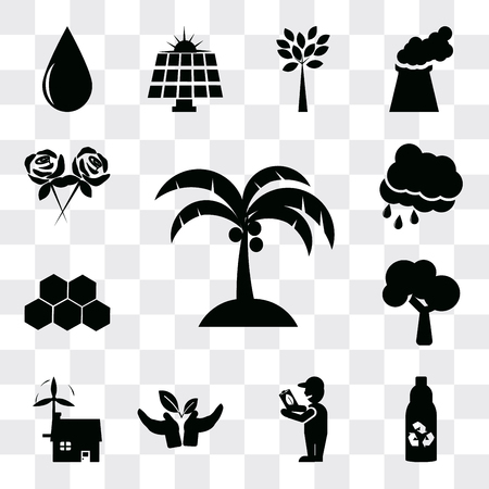 Set Of 13 simple editable icons such as Coconut tree, Recycled bottle, Global Awareness, Plant a Ecological house, Tree, Eco power cells, Rain Cloud, Flower, web ui icon pack