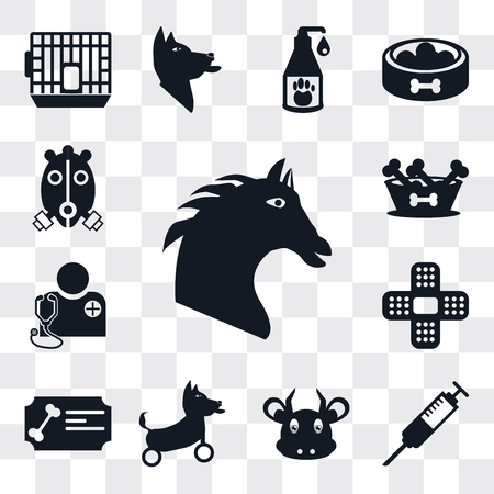Set Of 13 simple editable icons such as Horse, Syringe, Cow, Disabled, Certificate, Plaster, Veterinarian, Dog food, Oxygen mask, web ui icon pack