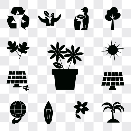 Set Of 13 simple editable icons such as Two Flowers, Coconut tree, Flower, Light Bulb, Global, Solar Energy, Eco energy power, Sunlight, leaves, web ui icon pack
