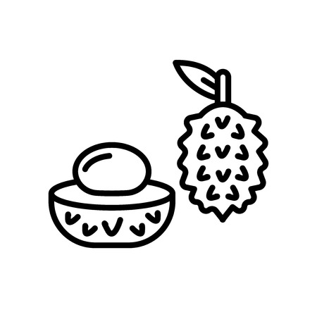 Lychee icon vector isolated on white background. Lychee transparent sign Banque d'images - 106871430