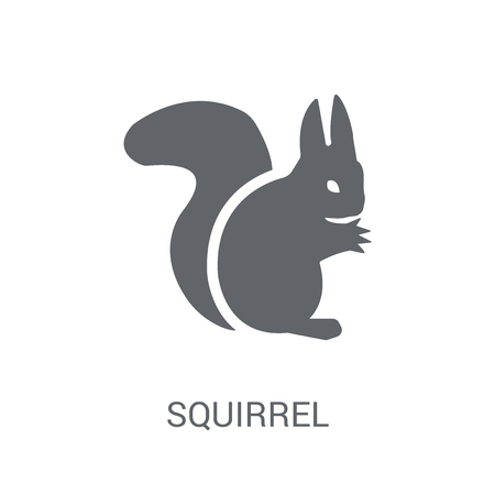 Squirrel icon. Trendy Squirrel logo concept on white background from animals collection. Suitable for use on web apps, mobile apps and print media.