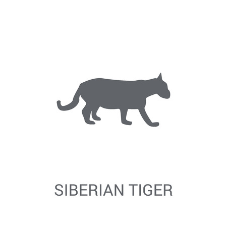 Siberian tiger icon. Trendy Siberian tiger logo concept on white background from animals collection. Suitable for use on web apps, mobile apps and print media.