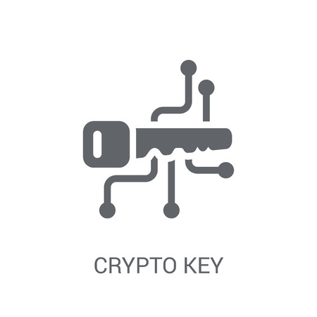 crypto key icon. Trendy crypto key logo concept on white background from Cryptocurrency economy and finance collection. Suitable for use on web apps, mobile apps and print media.