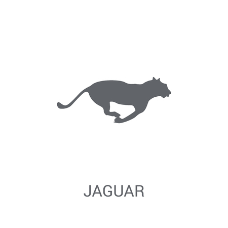 Jaguar icon. Trendy Jaguar logo concept on white background from animals collection. Suitable for use on web apps, mobile apps and print media.