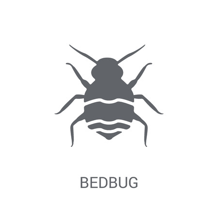 Bedbug icon. Trendy Bedbug logo concept on white background from animals collection. Suitable for use on web apps, mobile apps and print media.