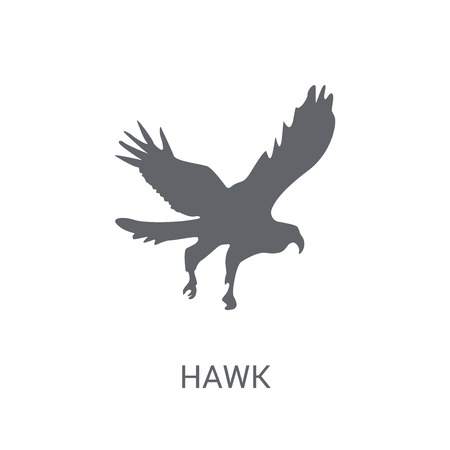 Hawk icon. Trendy Hawk logo concept on white background from animals collection. Suitable for use on web apps, mobile apps and print media. Illustration