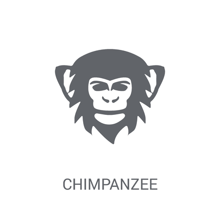 chimpanzee icon. Trendy chimpanzee logo concept on white background from animals collection. Suitable for use on web apps, mobile apps and print media. Illustration