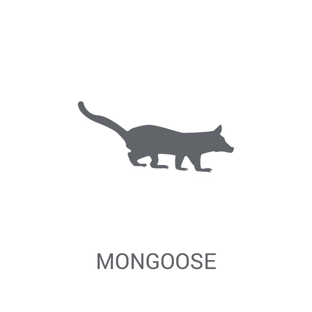 Mongoose icon. Trendy Mongoose logo concept on white background from animals collection. Suitable for use on web apps, mobile apps and print media. Stock Vector - 111989397