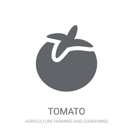 Tomato icon. Trendy Tomato logo concept on white background from Agriculture Farming and Gardening collection. Suitable for use on web apps, mobile apps and print media.