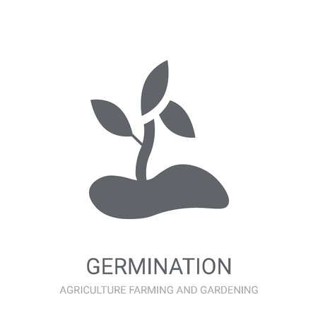 Germination icon. Trendy Germination logo concept on white background from Agriculture Farming and Gardening collection. Suitable for use on web apps, mobile apps and print media.