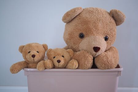 brown teddy bear group pokes the head out of the plastic box. Children's play concept