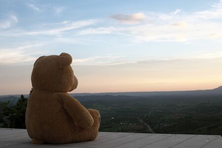 Teddy bear sitting alone on a wooden balcony. Look sad and lonely Foto de archivo - 143197891