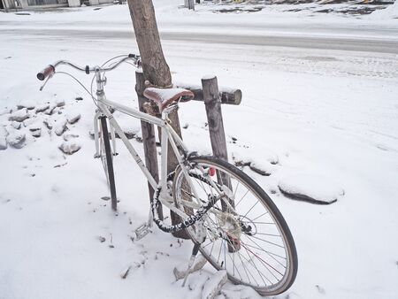 Bike parked next to the tree in the winter. Snow falls on the bike and the road surface becomes white.