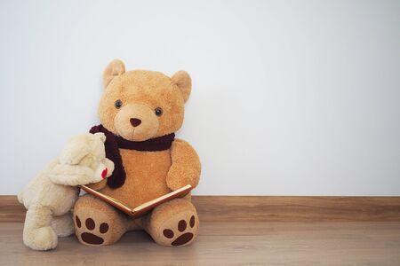 A teddy bear is reading a book for another teddy bear.