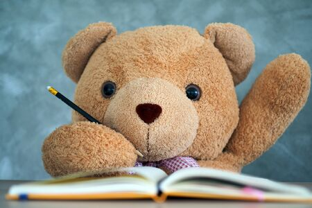 Teddy Bear sitting on a desk And raise your hand when asked. Communication to school children. Give Teddy Bear a Student Representative