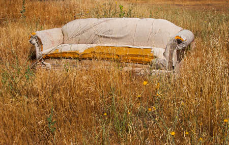 falling apart: an abandoned falling apart couch in a fiels of long brown grass