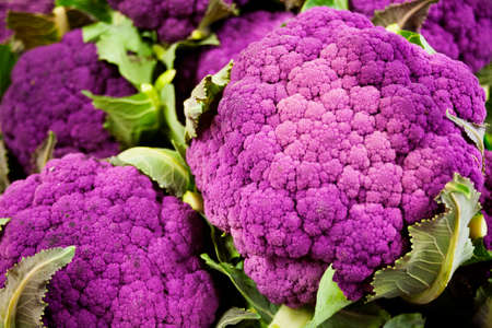 heads of purple cauliflower in a pile
