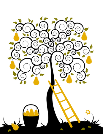 orchard fruit:  pear tree, ladder and basket of pears on white background