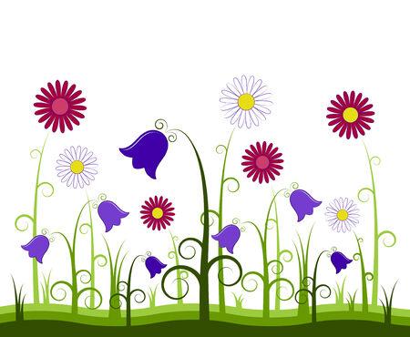 bluebells: flowers on white background Illustration
