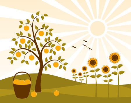 landscape with apple tree and sunflowers Vector