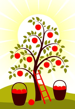 orchard fruit: vector background with apple tree, ladder and baskets of apples