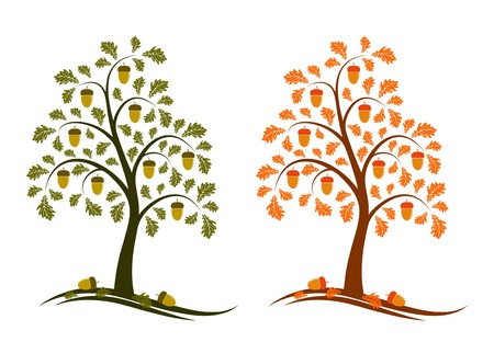 two versions of oak tree on white background