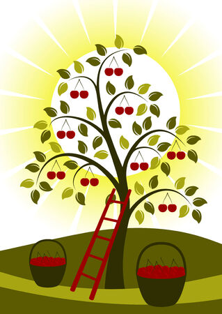 cherry tree, ladder, baskets of cherries and sun Stock Vector - 7970831
